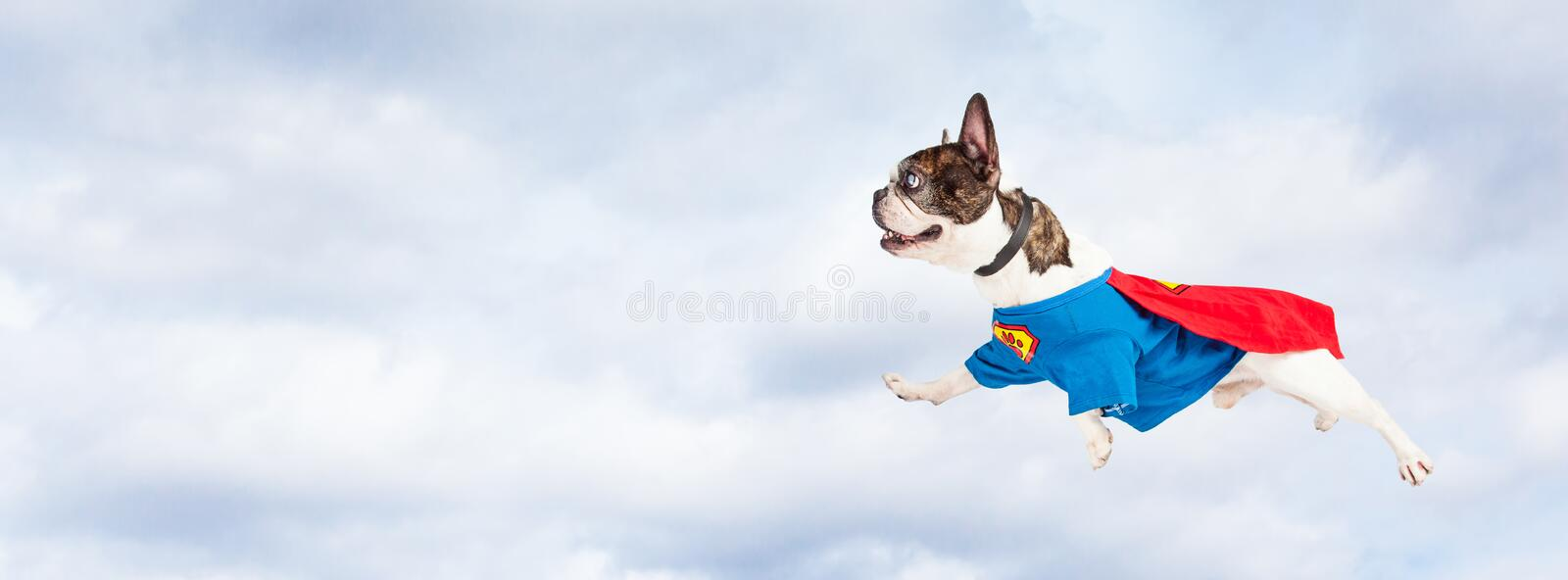 Super Hero Dog Flying Through Sky. Funny photo of French Bulldog breed dog wearing super hero costume flying through clouds in the sky stock image
