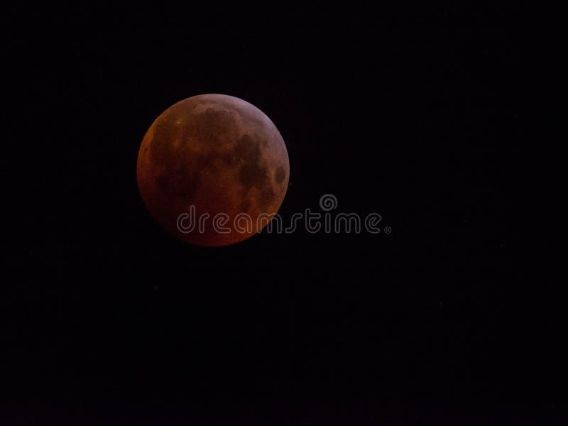 Super krwionośna wilcza księżyc Styczeń 2019 fotografia stock