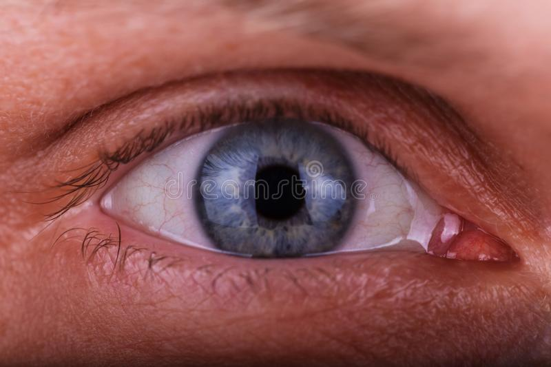 Super macro shot male`s eye. Texture of the blue eye is visible royalty free stock images
