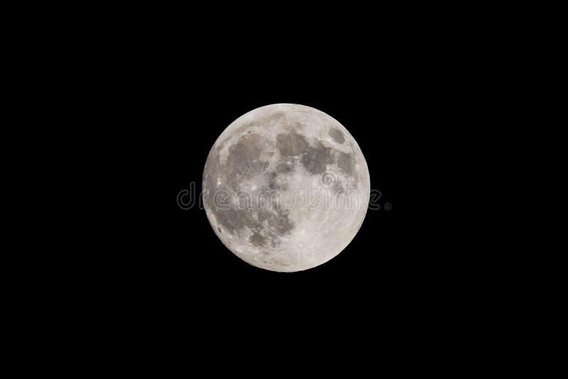 Super Moon royalty free stock photos