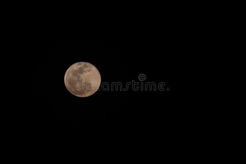 Super pełnej krwi wilcza księżyc wzrasta nad horyzont w Zjednoczone Emiraty Arabskie obraz stock