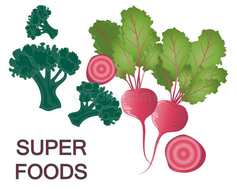 Super healthy vegetables advert with beetroot and broccoli on a white background. An illustration of super foods brocoli and beetroot on a white background stock illustration