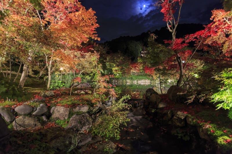 Superb sikt, nedgångfärg på Eikando Zenrinji, Japan i hösten arkivbild