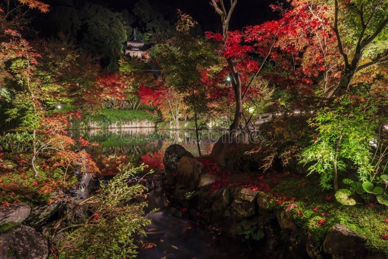 Superb sikt, nedgångfärg på Eikando Zenrinji, Japan i hösten royaltyfri fotografi