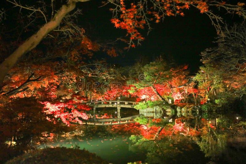 Superb view, fall color at Eikando Zenrinji royalty free stock photography