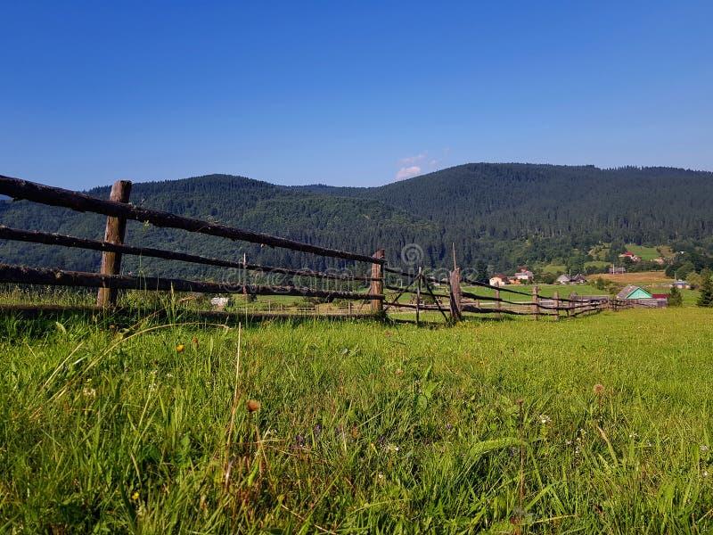 Superbe paysage de campagne estivale avec collines boisées, champ de campagne herbeux en montagne. Jour ensoleillé, ciel bleu cl images libres de droits