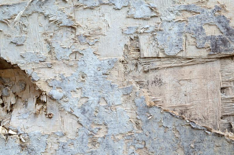 Superbe texture bois marron ancien Photo d'une surface en bois image stock