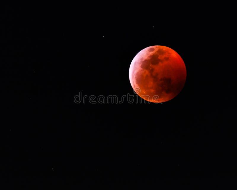 Superblut Wolf Moon 2019 lizenzfreies stockfoto