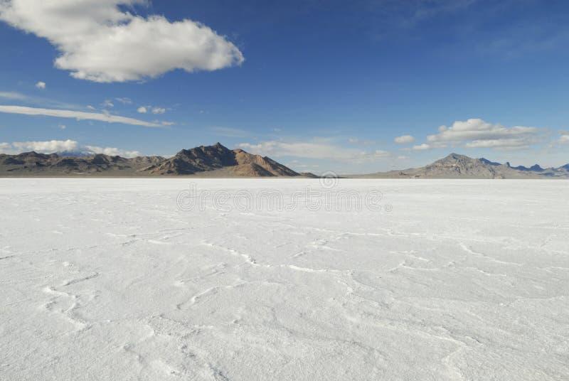 Superfície brilhante de planos de sal de Bonneville, Utá fotografia de stock royalty free