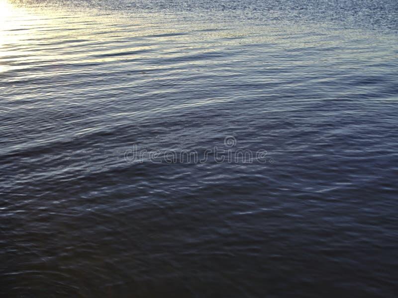 Superfície da água com algumas ondinhas imagens de stock royalty free