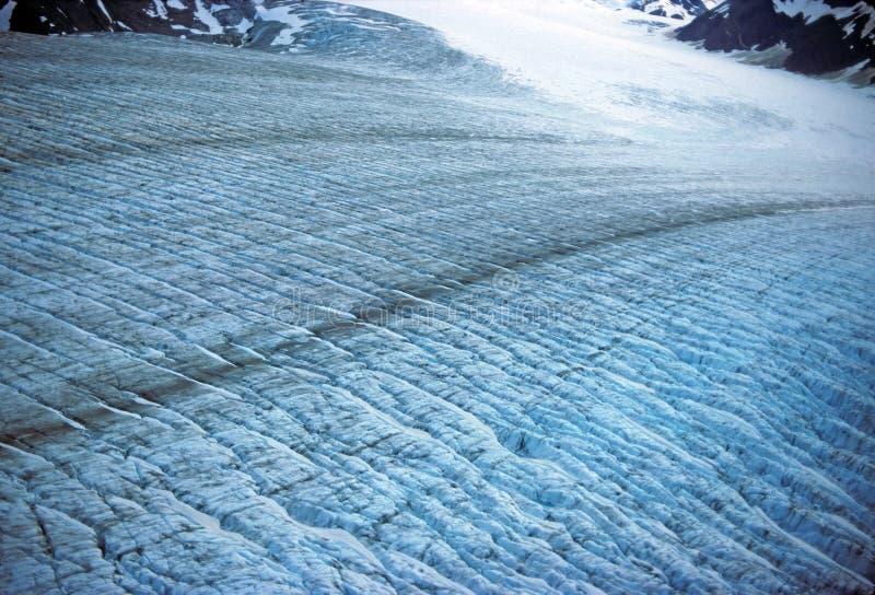 Superfície da geleira de Muir fotos de stock