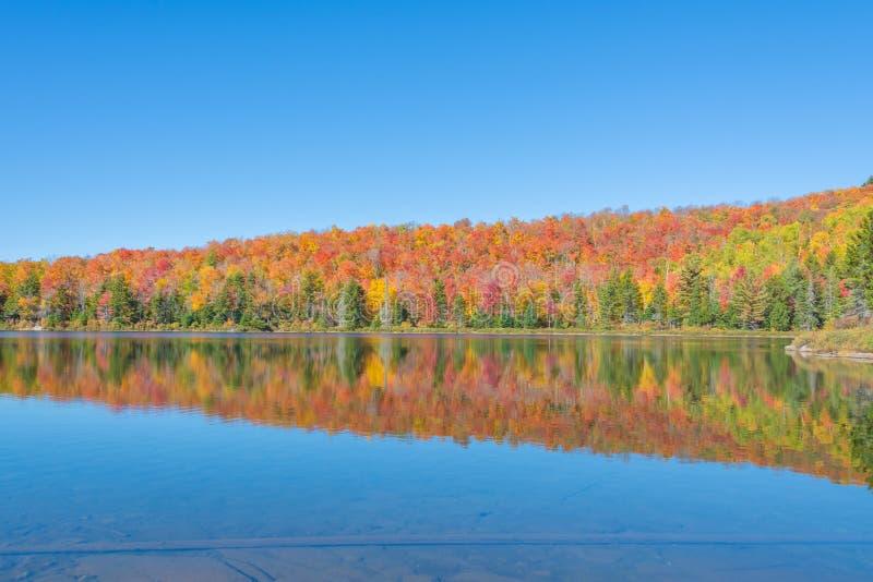 Superfície de Autumn Colors Dance On The de uma lagoa imagens de stock royalty free