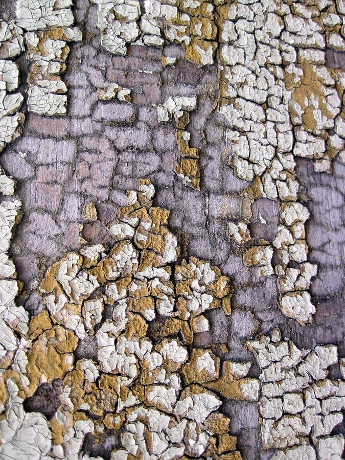 Superfície de madeira colorida velha fotografia de stock royalty free