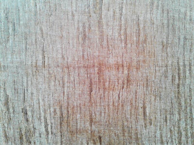 Superfície de madeira da grão após o corte, fundo nave imagem de stock royalty free