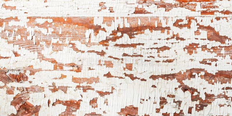 Superfície de madeira do vintage, fundo com textura marrom branca da pintura da casca Lugar para seu texto imagens de stock