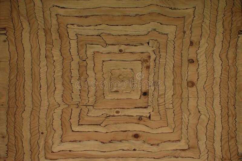 Superfície de madeira incomum foto de stock royalty free