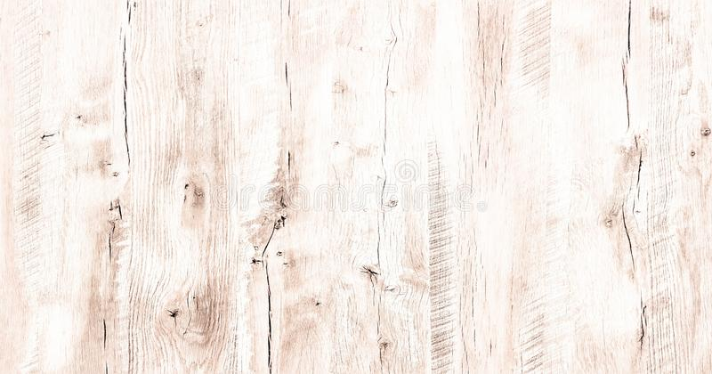 Superfície de madeira macia da textura da lavagem branca clara como o fundo O Grunge whitewashed a opinião superior do teste padr fotos de stock