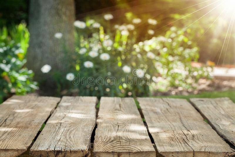 Superfície de madeira vazia no fundo borrado foto de stock royalty free