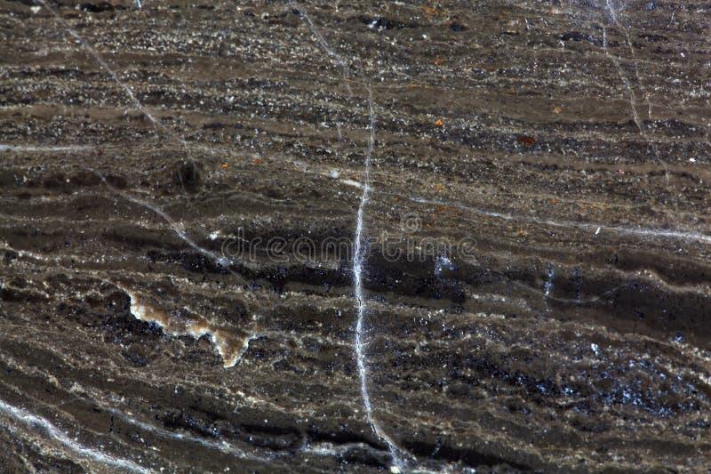 Superfície de uma rocha do carbonato fotografia de stock