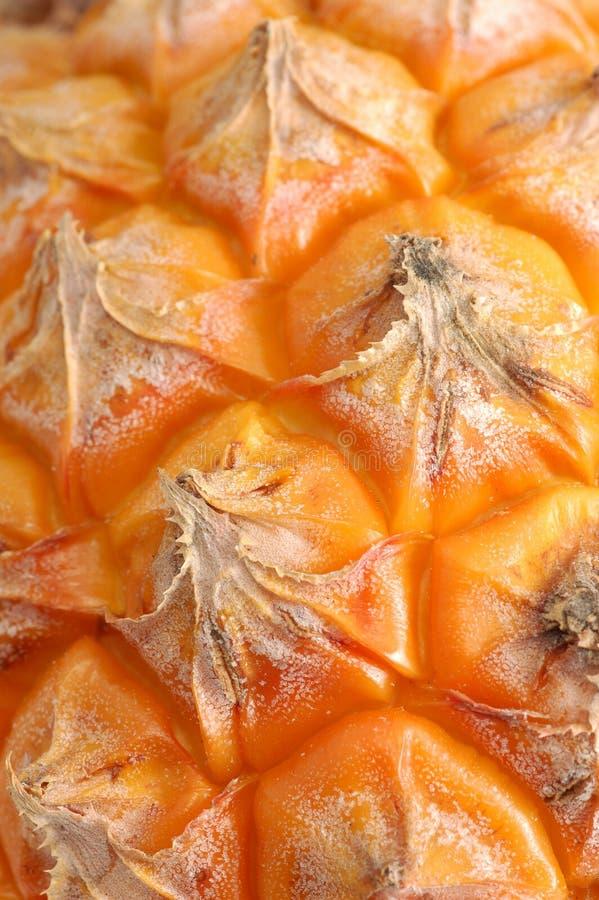 Superfície do abacaxi foto de stock