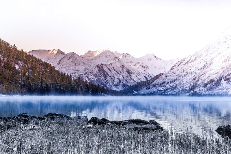 Superfície do espelho do lago da montanha Natureza bonita, uma viagem às montanhas em um parque nacional na república de Altai fotografia de stock royalty free