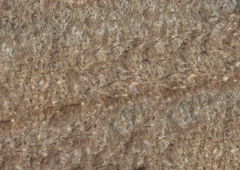 Superfície natural Textured da rocha da forma marrom natural imagens de stock royalty free