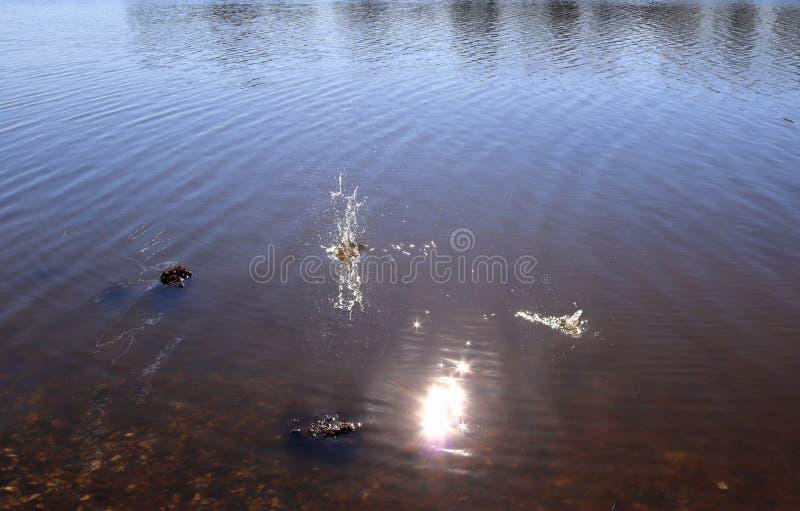 Superf?cie azul da ?gua do lago com ondinhas e artigo do espirro que cai nele ao refletir a luz solar foto de stock royalty free