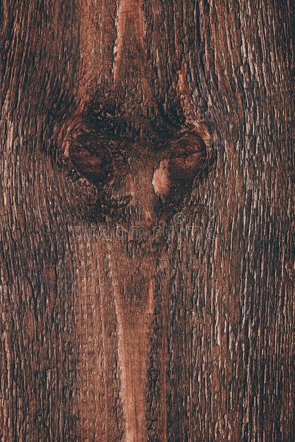 Superf?cie de madeira escura imagem de stock royalty free