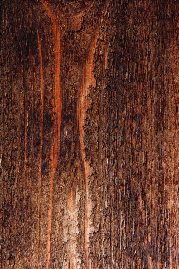 Superf?cie de madeira escura imagem de stock