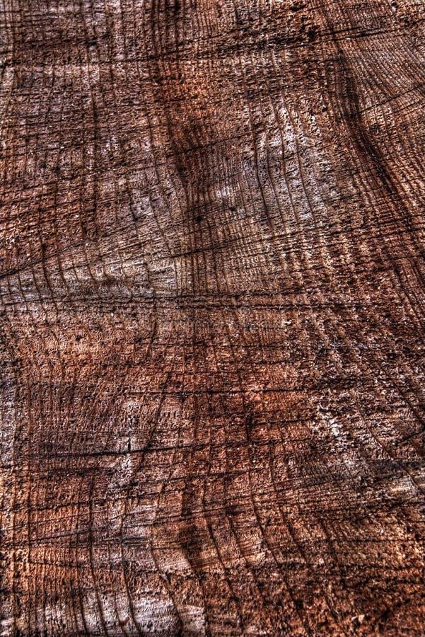 Superficie de madera del corte de la vertical de la textura fotos de archivo libres de regalías