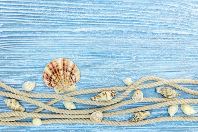 Superficie de madera rústica azul con la cuerda y diversas conchas marinas fotografía de archivo libre de regalías