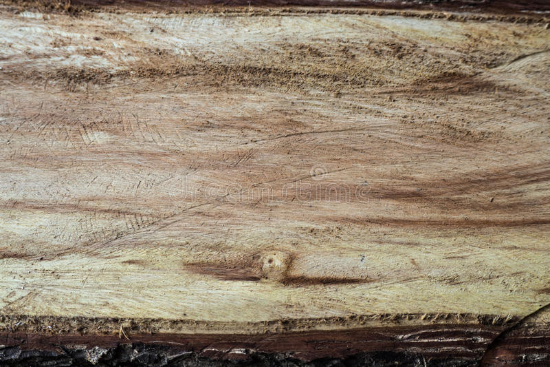Superficie de madera texturizada fotos de archivo