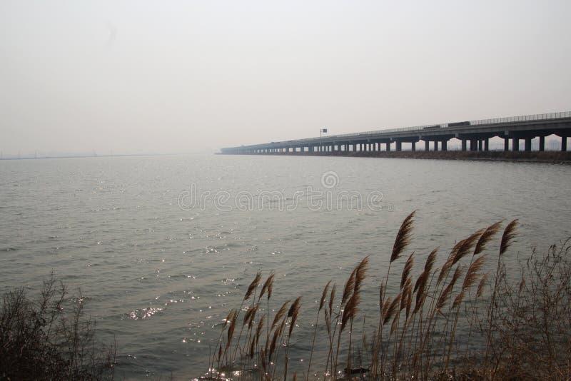 Superficie del mare e canne e ponti fotografie stock libere da diritti