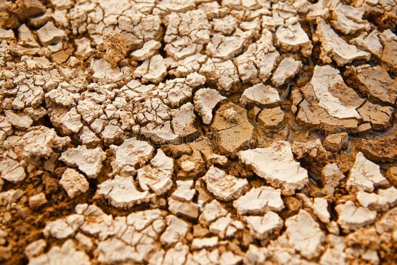 Superficie del suolo secco con la foto unica delle crepe fotografia stock