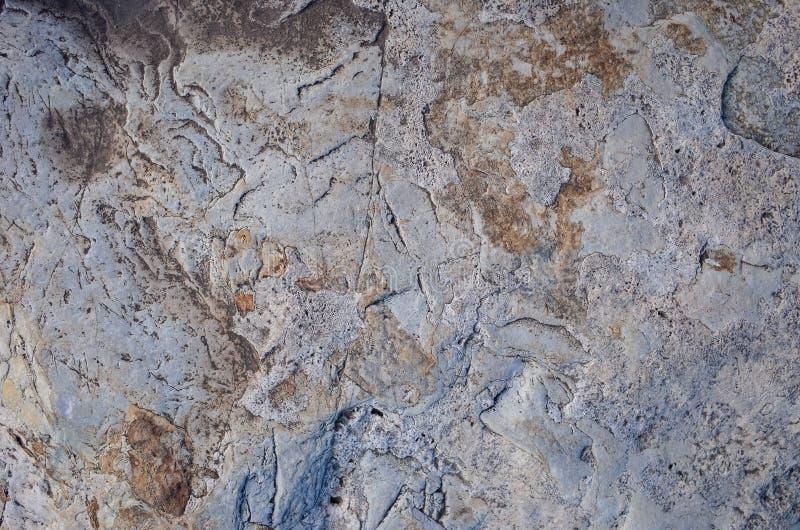 Superficie della roccia fotografie stock