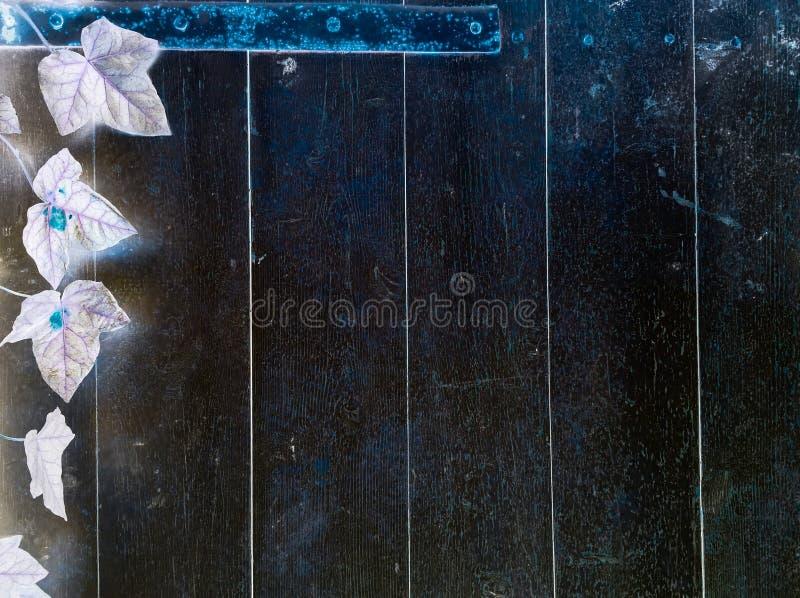 Superficie di legno scura del fondo di struttura con il vecchio modello naturale o vista di legno scura del piano d'appoggio di s fotografia stock