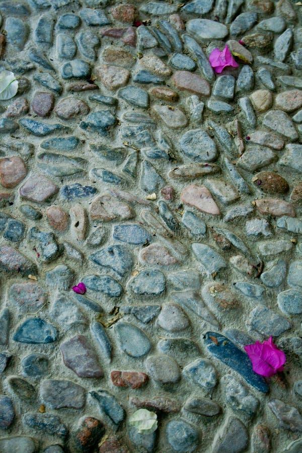 Superficie di pietra fotografia stock libera da diritti