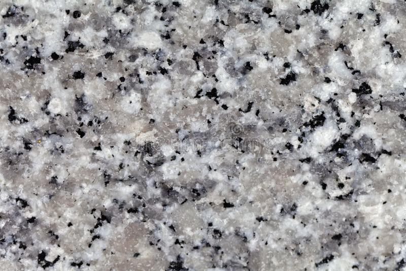Superficie di un granito grigio dalla Corsica fotografie stock libere da diritti