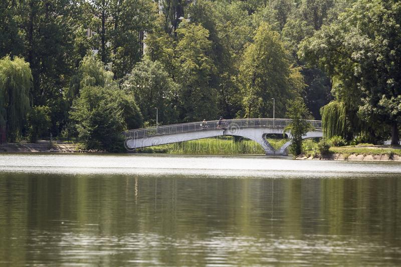 Superficie reservada del lago, pequeño puente arqueado con la verja forjada en abedul y fondo de los sauces fotografía de archivo