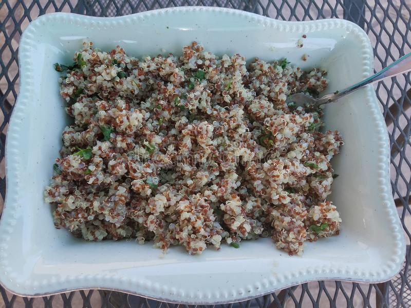 Superfood quinoa. Superfood super healthy quinoa full of protien and healthy carb tossed with lemon and cilantro royalty free stock photo