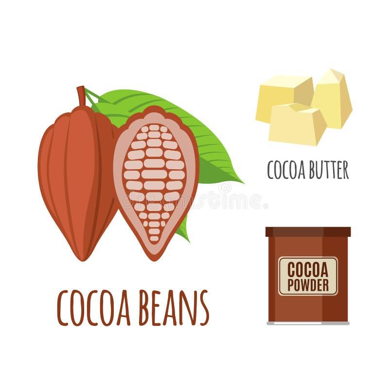 Superfoodcacao in vlakke stijl wordt geplaatst die vector illustratie