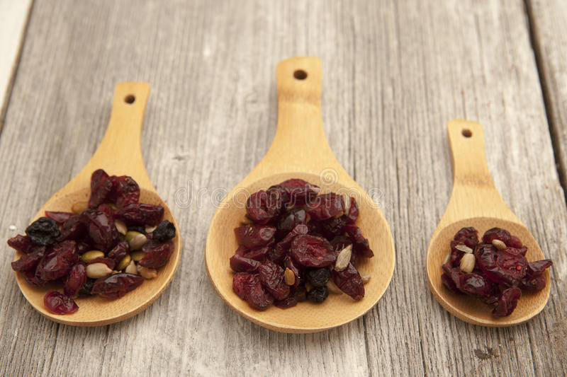 Superfoods, cranberry, raisins, and sunflowers on wooden spoons. royalty free stock photo