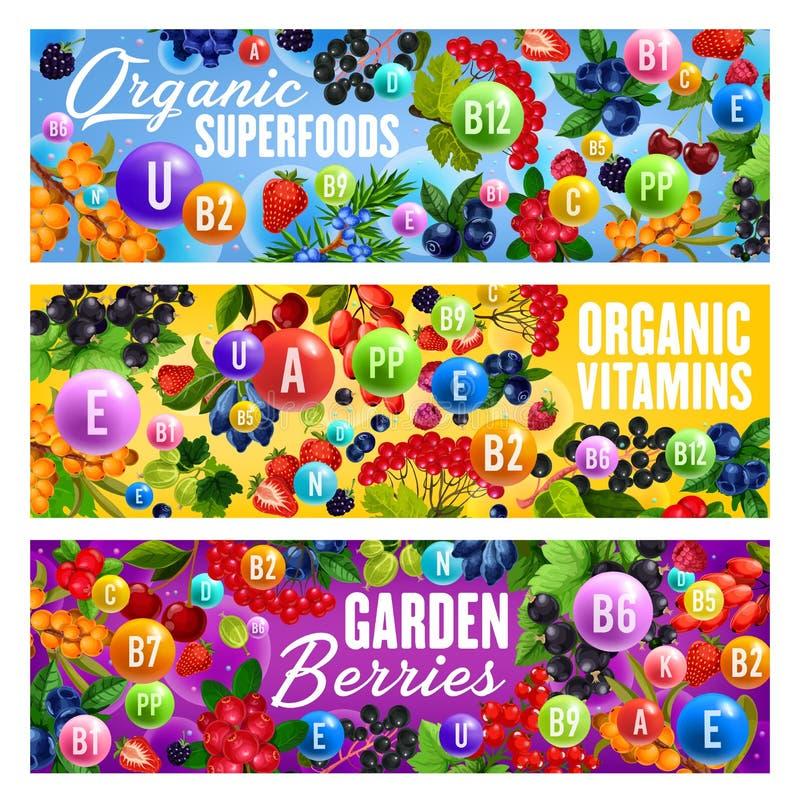Superfoods da vitamina e bagas orgânicas naturais ilustração do vetor