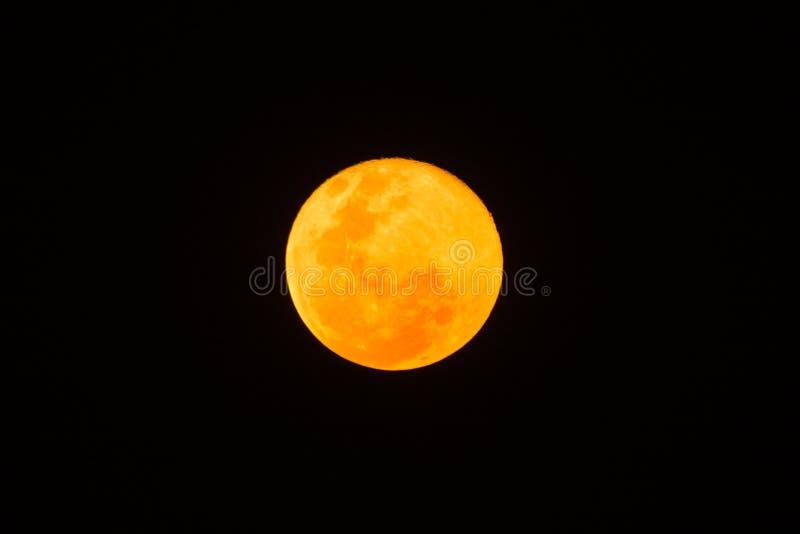 Superluna amarilla en un cielo negro foto de archivo