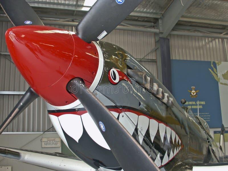 Supermarine Spitfire Mk VIII Front