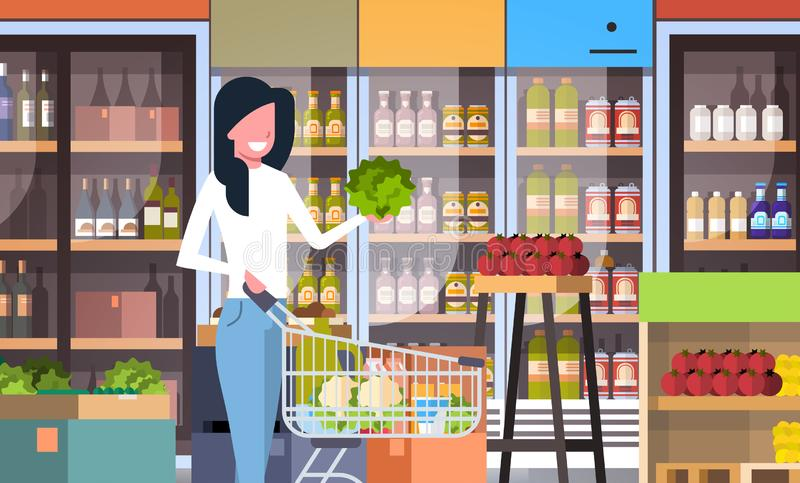 Supermarket woman customer with shopping trolley cart buying vegetables grocery market interior flat horizontal. Vector illustration royalty free illustration
