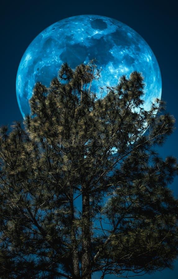 Supermoon Landschap van hemel en volle maan met erachter maanlicht stock afbeelding