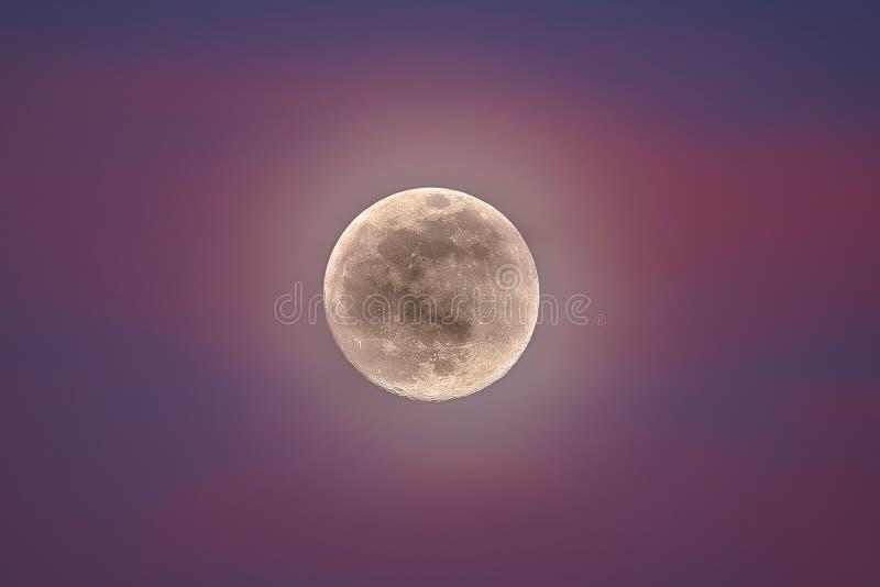 Supermoon Luna Llena en nubes rosadas Luna estupenda 2 19 2019 imagen de archivo