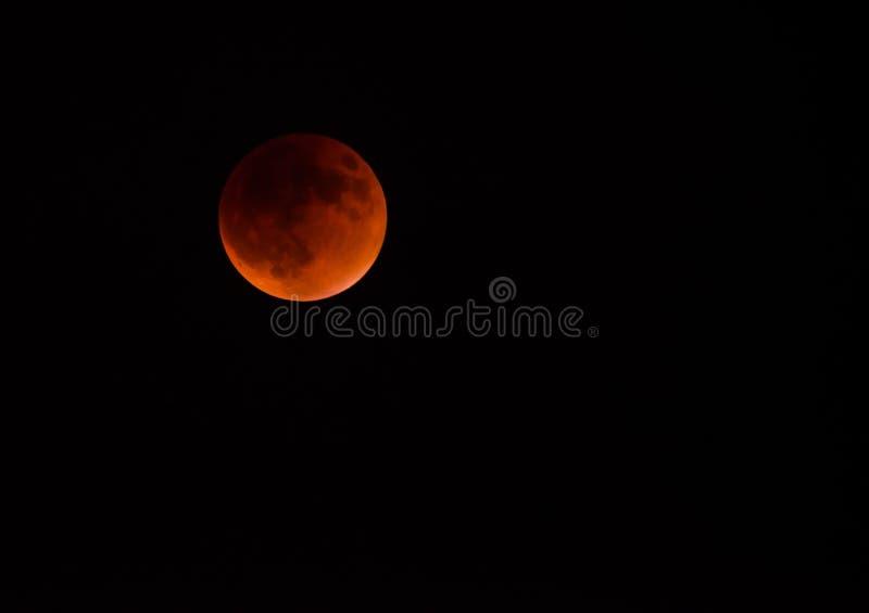 Supermoon månförmörkelse royaltyfria foton