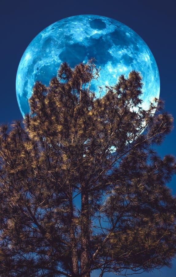 Supermoon Paesaggio del cielo e della luna piena con luce della luna dietro immagini stock libere da diritti